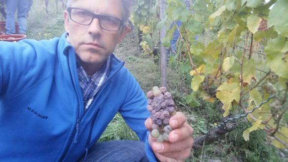 Weinbauschule Altenkirch mit Michael Kugel