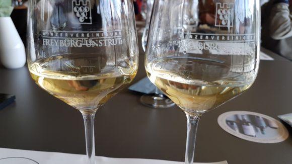 Weinprobe Winzervereinigung Freyburg-Unstrut eG