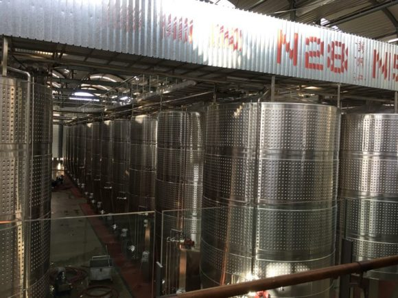 Kellerei Xige Winery