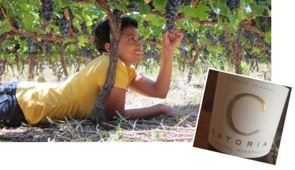 Pinotage in Südafrika