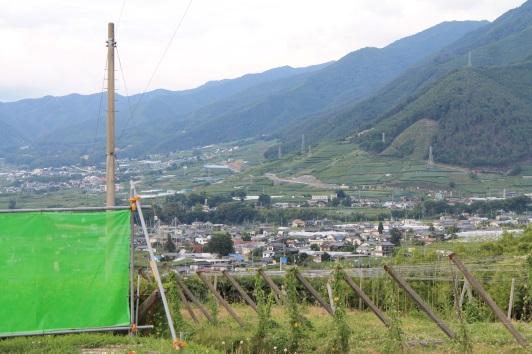 Vom Verkostungsraum genießt man eine spektakuläre Aussicht auf das Tal und die Weingärten, die hier Katsunuma heißen.