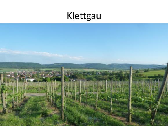 Weinreise-Bodensee-2015_06