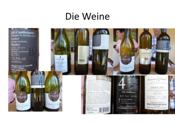 Weinreise-Bodensee-2015_07-2